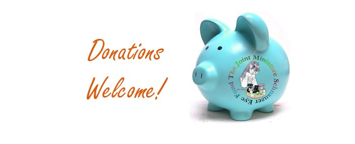 JMSEF Donations Welcome